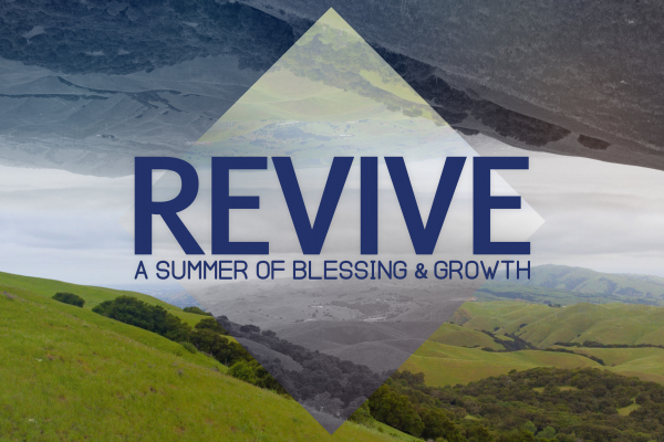 Revive: A Summer of Blessing and Growth
